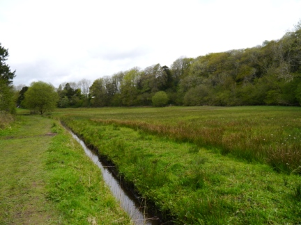 The National Trust owned Lambert's Meadow