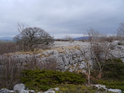 Limestone pavement on Hutton Roof Crags