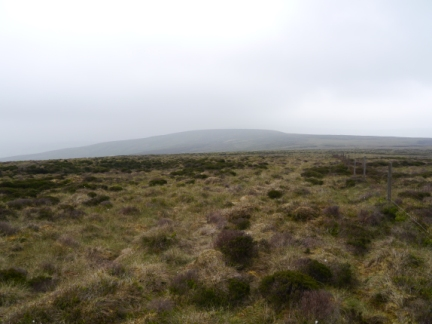 The view of Blaze Moss from Holdron Moss
