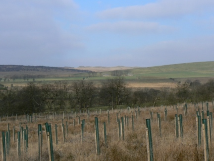 Looking across to Bowland Knotts on the skyline