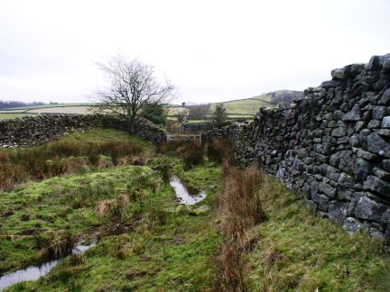 The rather moist Cocket Lane