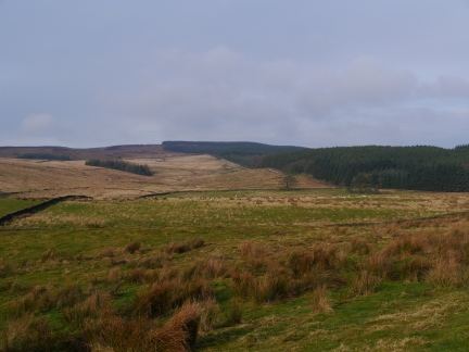 Easington Fell and Grindleton Forest