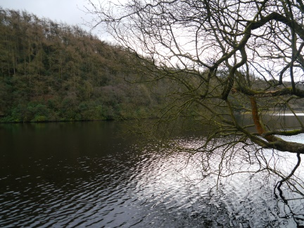 Grizedale Reservoir
