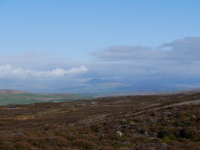 A distant view of Ingleborough