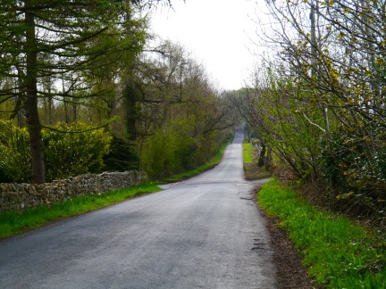 The quiet Littledale Road