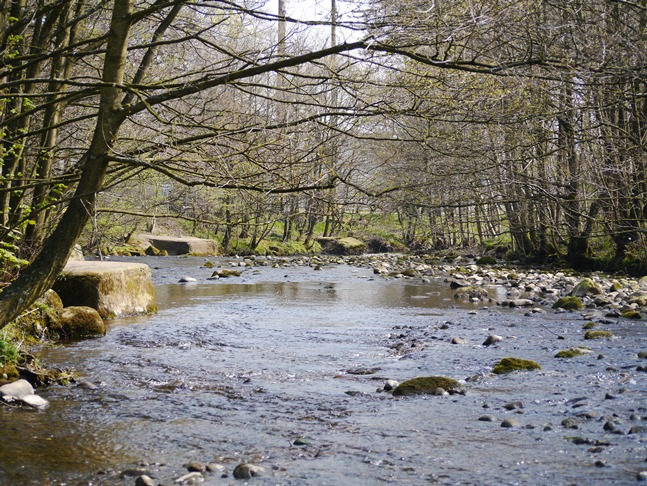 The River Dunsop at Dunsop Bridge
