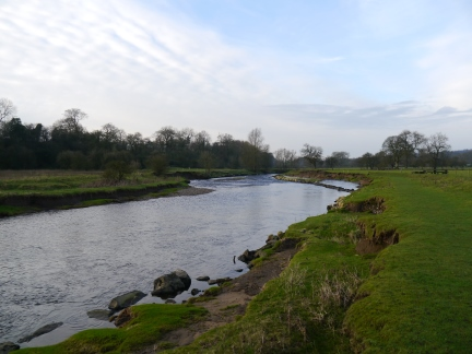 The banks of the Ribble between Sawley and Grindleton