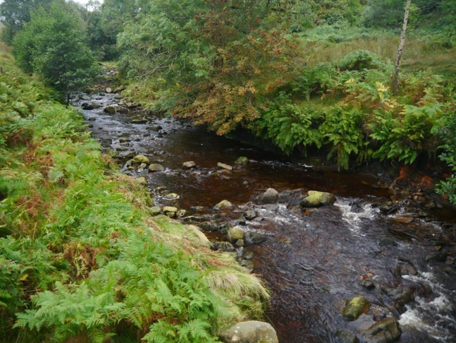The River Roeburn from Mallowdale Bridge