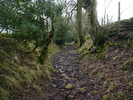 A section of the muddy Rodhill Lane