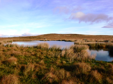 The small tarn on Brown Hill End