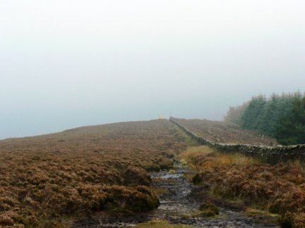 Approaching the top of Longridge Fell