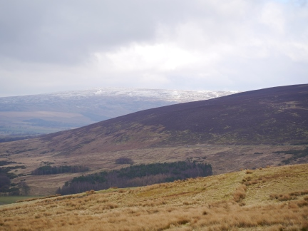The distant snow-covered Ward's Stone