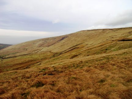 The upper southern slopes of Whins Brow