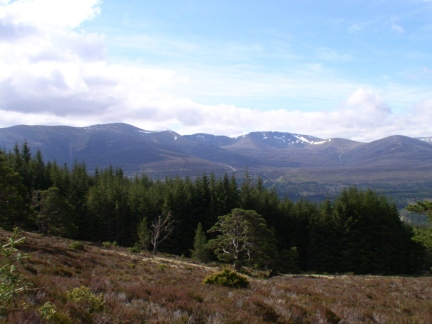 A view of the Cairngorms