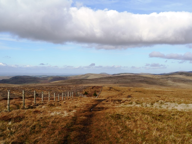 One of the lovely views of the Cheviots - Border bliss!