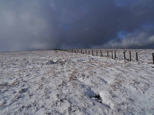 Following the Border fence to the top of Carter Fell
