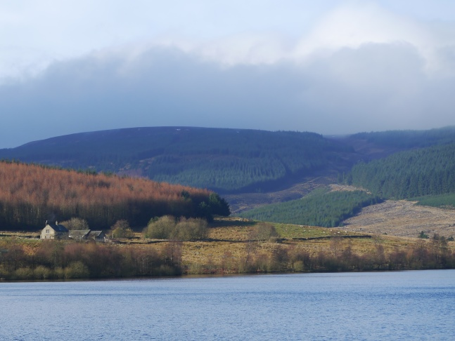 Looking across Catcleugh Reservoir to Chattelhope and the wooded slopes of Girdle Fell