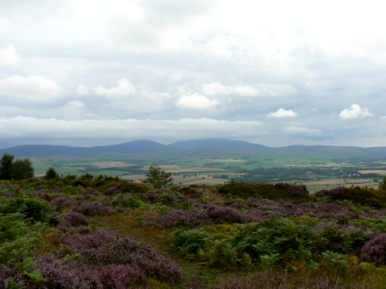 Looking west to the Cheviot and Hedgehope Hill from Hepburn Moor