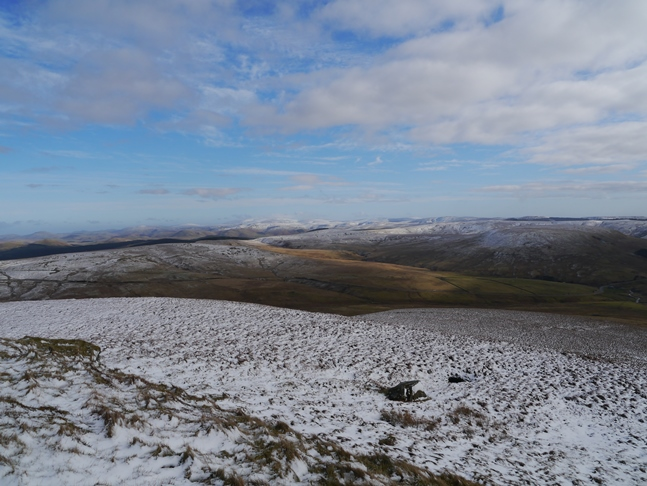 View of the Cheviots
