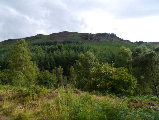 Looking up at Coe Crags