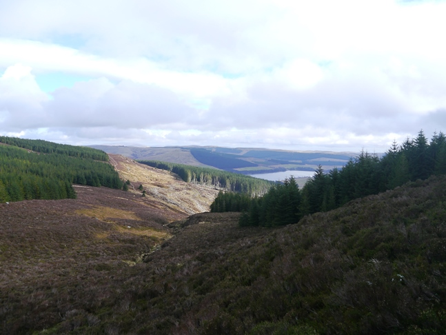 View from the top of Cross Cleugh