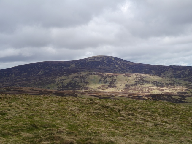 Hedgehope Hill from Shill Moor