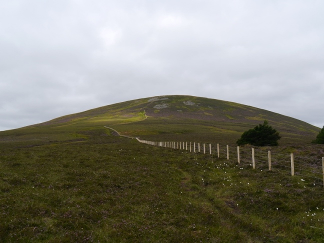 Approaching Hedgehope Hill