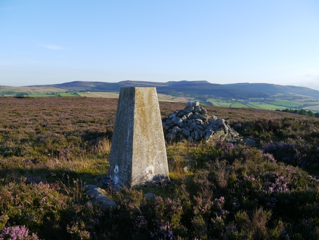 The Height Plantation trig point