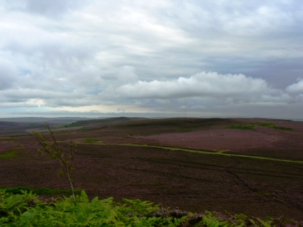 Looking back down to Hepburn Moor from Ros Castle