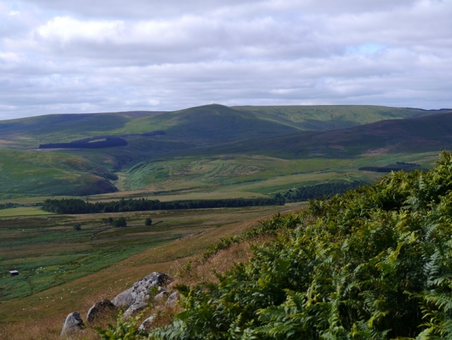 Hogdon Law and Wether Hill from the climb on to Cunyan Crags