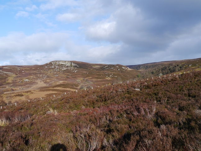Looking across the side valley of Darden Burn to the crags of Key Heugh