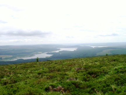 Kielder Water from the lonely pine