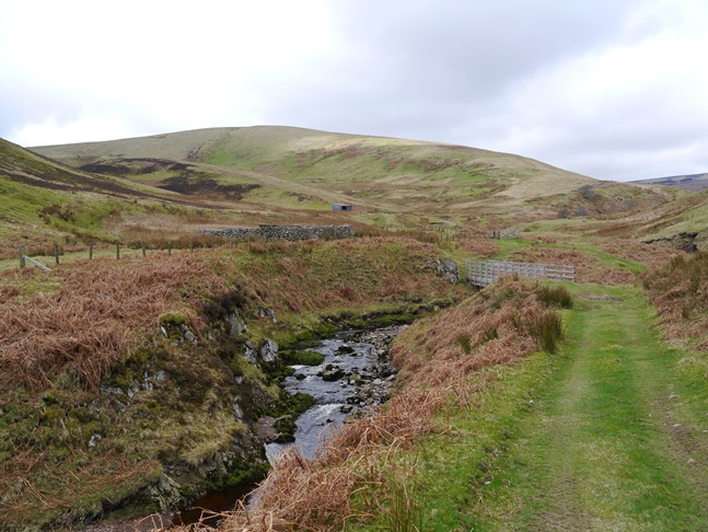 Looking back up at Lint Lands from beside the River Breamish