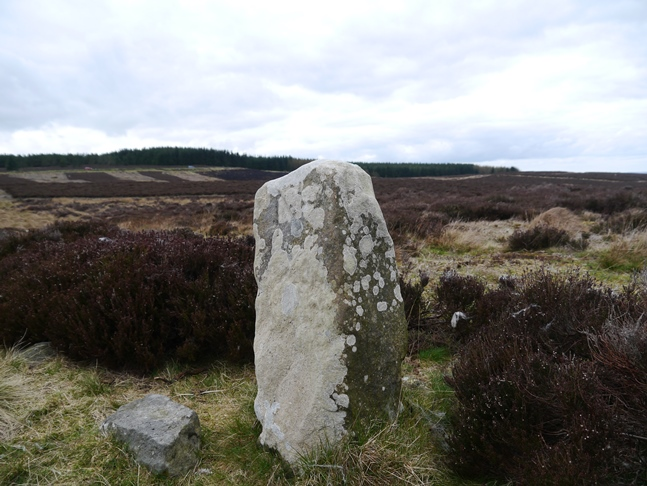 Another boundary stone