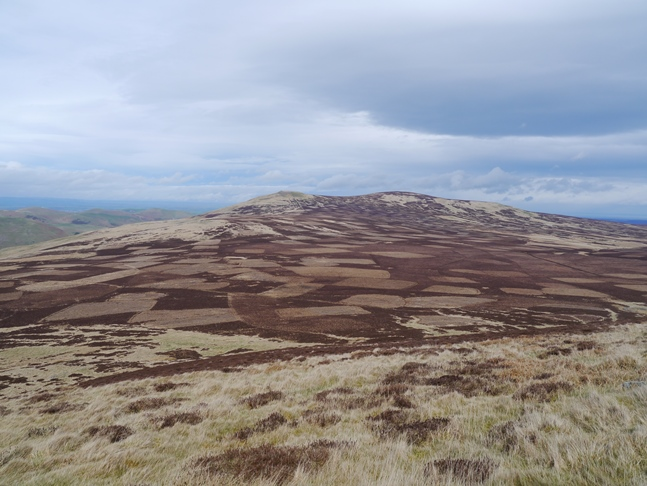 A patchwork Newton Tors from Coldburn Hill