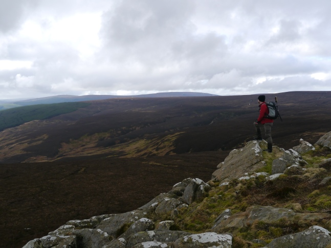 On White Crags