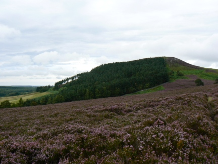 Ros Castle from Hepburn Moor