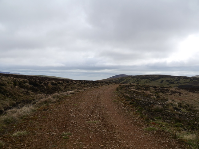The Salter's Road track just near the col between Bloodybush Edge and Lint Lands