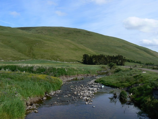 Shillhope Law and the River Coquet