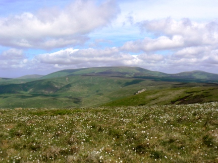 The Cheviot from Windy Gyle