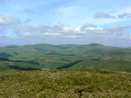Looking north from Windy Gyle to The Schil and The Curr