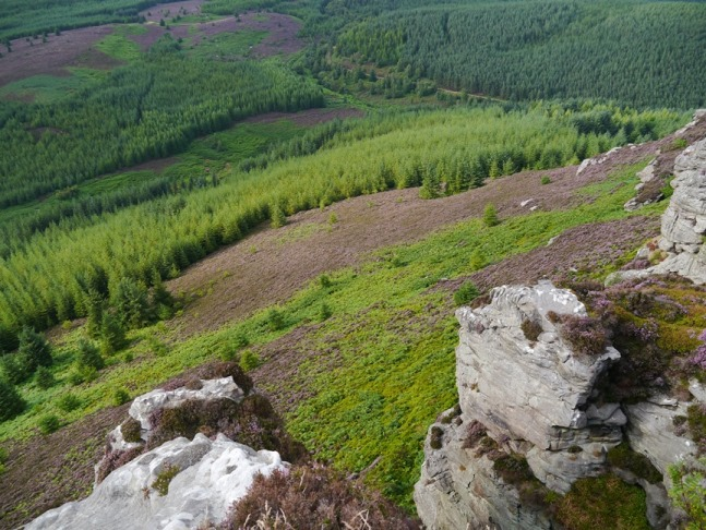 Looking down to Thrunton Wood from the edge of Coe Crags