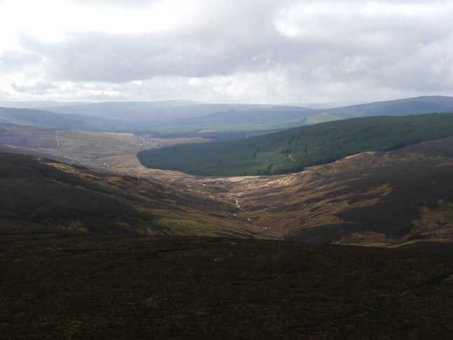 The view of White Kielder Burn from White Crags