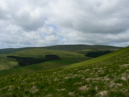 Windy Gyle as seen from the southern slopes of Yarnspath Law