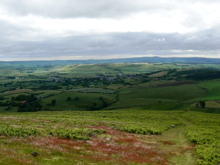 Looking down to Wooler from Humbleton Hill