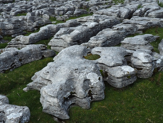 Limestone pavement on Angerholme Wold