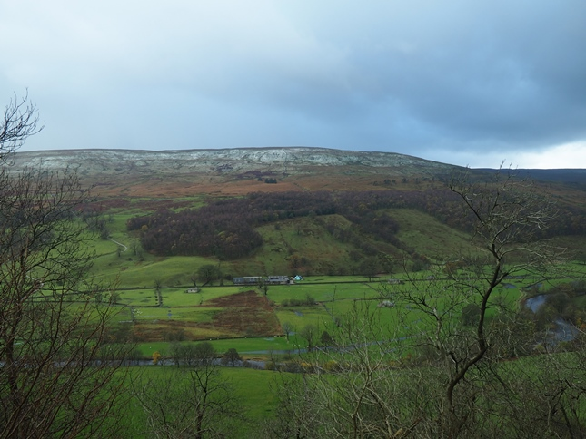 Looking across the valley towards Birks Fell