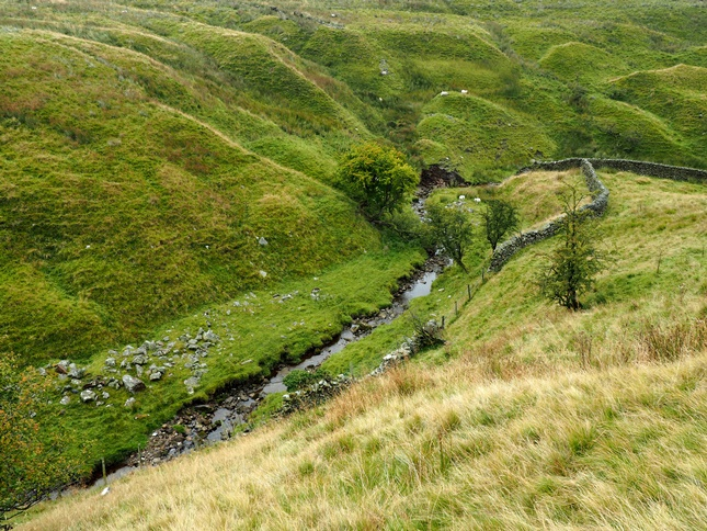 Looking down at Bookil Gill Beck