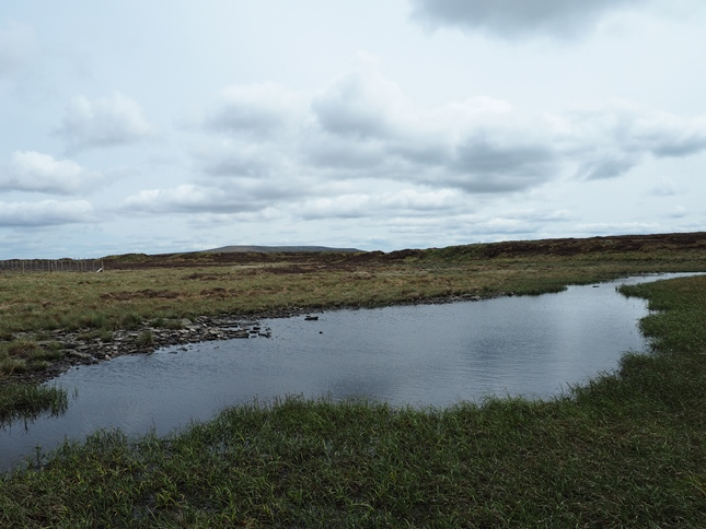 The meagre remains of Cray Tarn