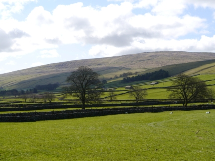 Darnbrook Fell from Littondale